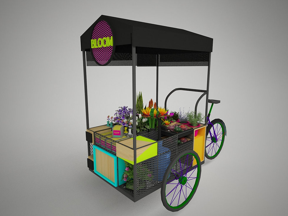 BICI BLOOM_00.jpg