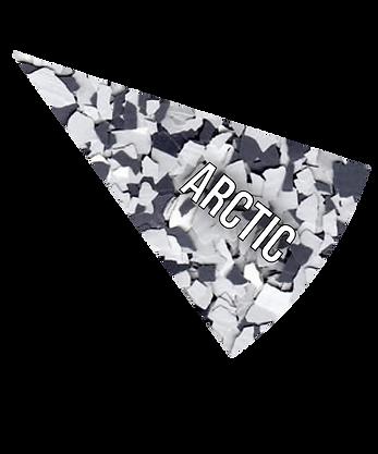 ARCTIC (1).png