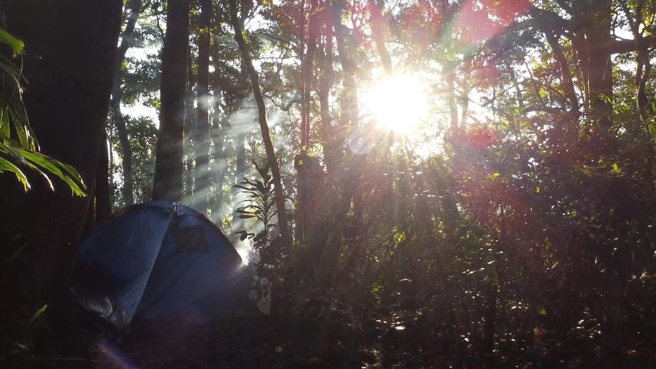 Mt Wagawn Trekk
