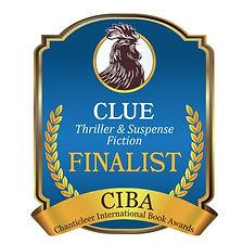 CLUE Finalist.JPG