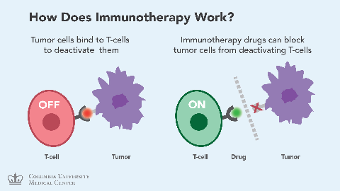 Immunotherapy.png