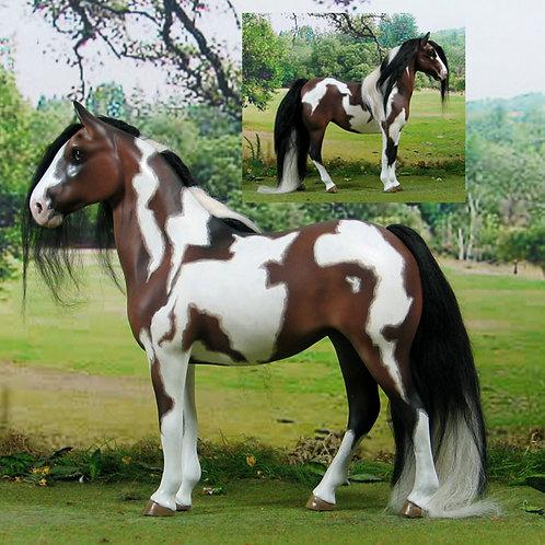 Show Hunter Pony