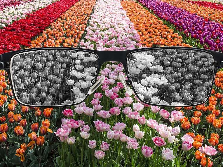 How_Color-Blind_Corrective_Glasses_Work.