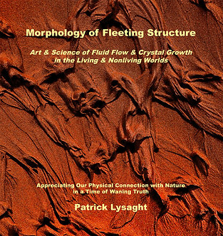 Morphology of Fleeting Structure