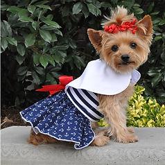 Nautical-Dog-Dress-Leash-2T.jpg
