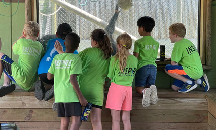 Summer Camp Zoo 2021 25_edited.jpg