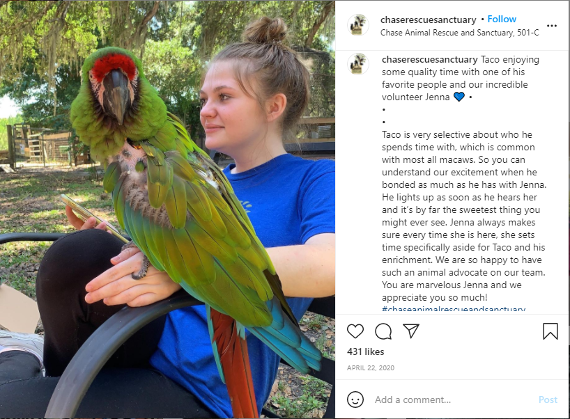 Showing Appreciation on Instagram - Chase Rescue Sanctuary