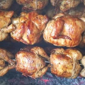 chickenz.jpg