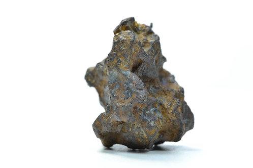 Sericho - Pallasite - found 2017 in Eastern Kenia - individual - 23.9 g
