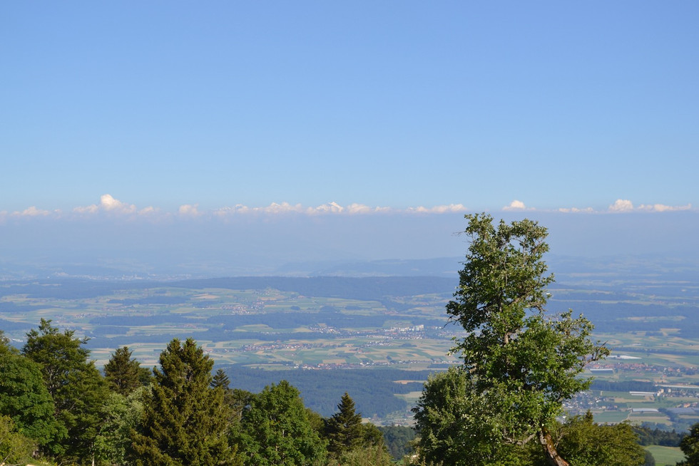 View from Mont Sujet