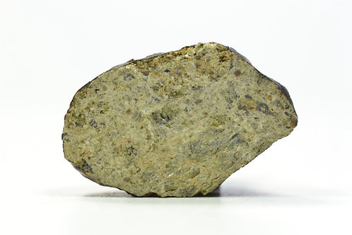 NWA 8379 - Diogenite - found 2013 in NW Africa - TKW 279 g - end cut - 5.4 g