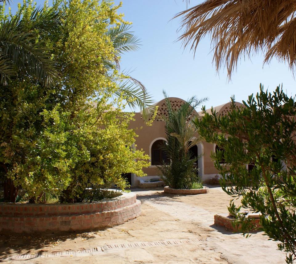 Farafra - Dakhla oasis Egypt - 11.jpeg