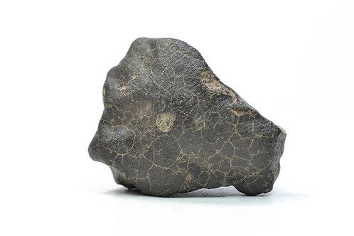 NWA 7538 - Chondrite LL5/6 - found 2012 in NW Africa TKW 826 g individual 22.1 g