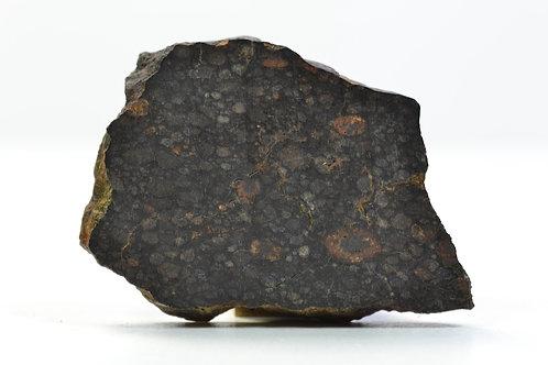 NWA 8376 - CV3 - found 2013 in NW Africa - TKW 201 g - part slice - 7.23 g