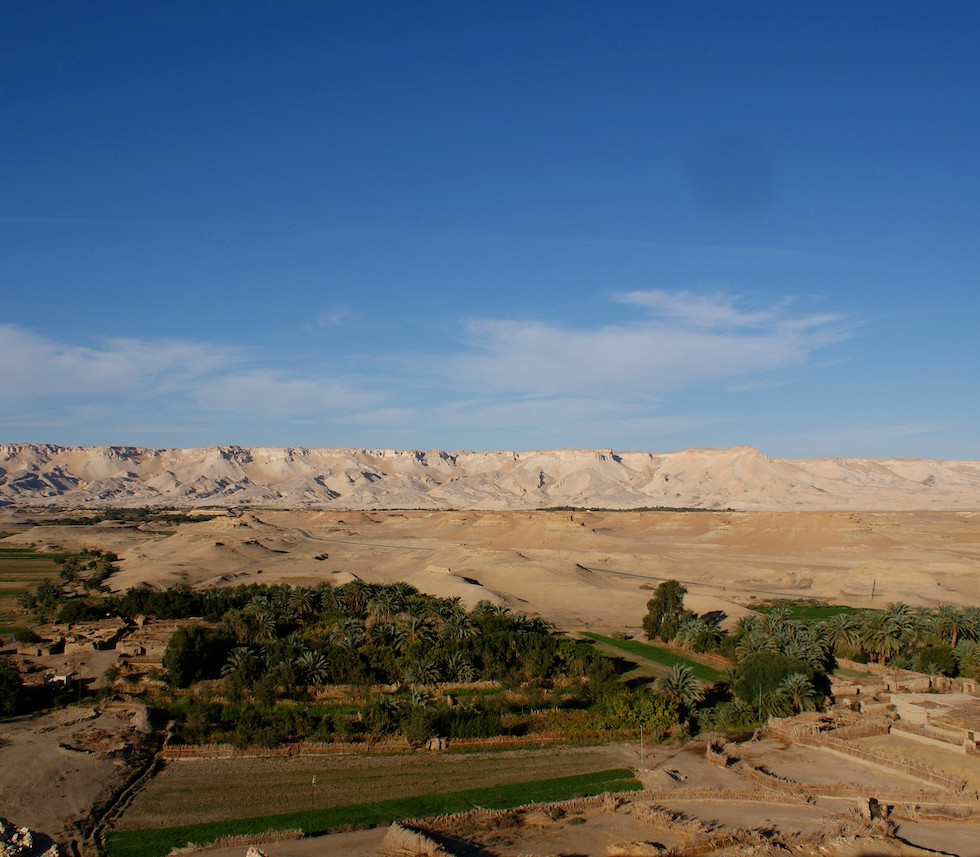 Farafra - Dakhla oasis Egypt - 44.jpeg