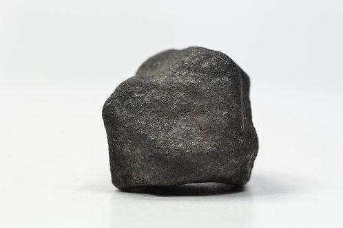 Oum Dreyga - Chondrite H3-5 breccia - fell 2013 Western Sahara individual 14.3 g
