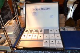 BLACK BEAUTY !!!! NWA 8171