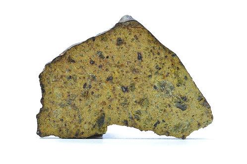 NWA 4034 - Diogenite - found 2005 in NW Africa - TKW 1513 g - full slice 7.5 g