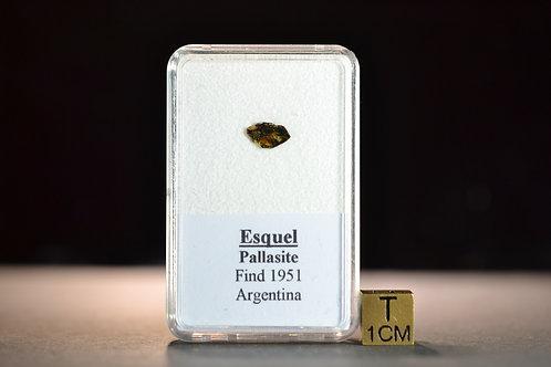 Esquel - Pallasite - found 1951 in Argentina - small Olivine fragment - 0.053 g