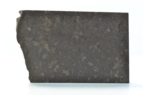 NWA 5996 - Ureilite - found 2009 in Morocco - TKW only 452 g part slice 15.49 g