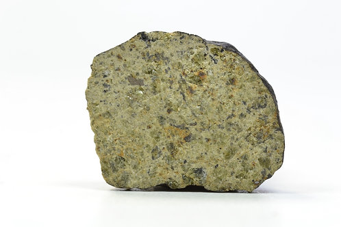 NWA 8379 - Diogenite - found 2013 in NW Africa - TKW 279 g - end cut - 3.9 g