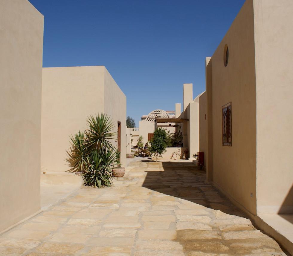 Farafra - Dakhla oasis Egypt - 8.jpeg