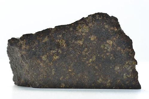 NWA 6471 - Ureilite - found 2010 in NW Africa - TKW 603 g - end cut - 14.9 g