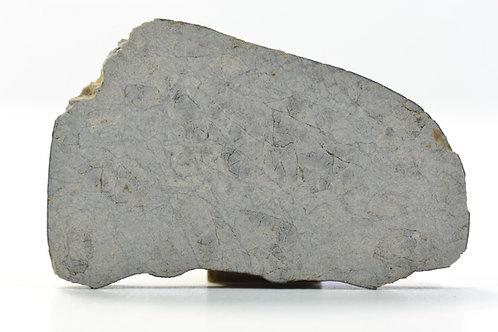 NWA 8309 - Eucrite - found 2012 in NW Africa - TKW 424 g - full slice - 4.3 g