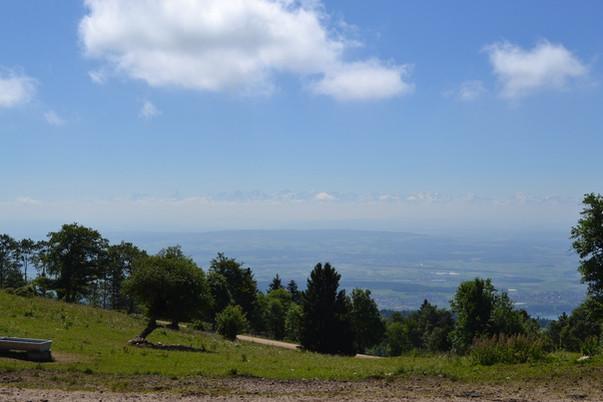 Mont Sujet