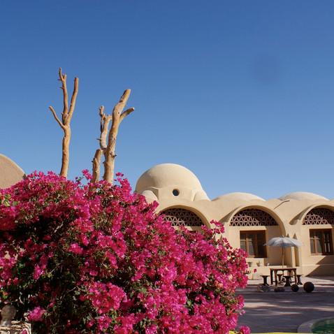 Farafra - Dakhla oasis Egypt - 14.jpeg