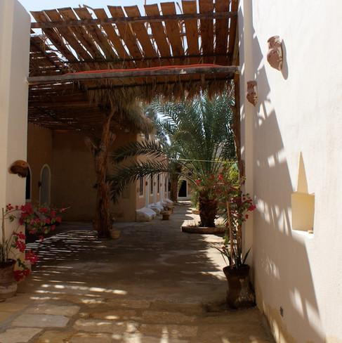 Farafra - Dakhla oasis Egypt - 9.jpeg