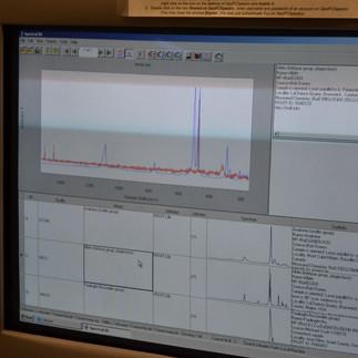 Raman Microprobe