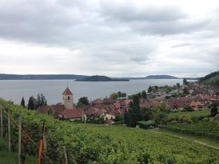 View on Twann
