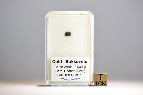 Cold Bokkeveld - Carb. Chondrite CM2 - fell 1838 - South Africa fragment 0.039 g
