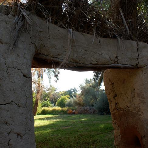 Farafra - Dakhla oasis Egypt - 30.jpeg