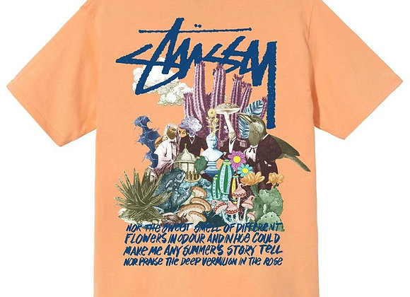 Stussy PSYCHEDELIC T-Shirt | peach