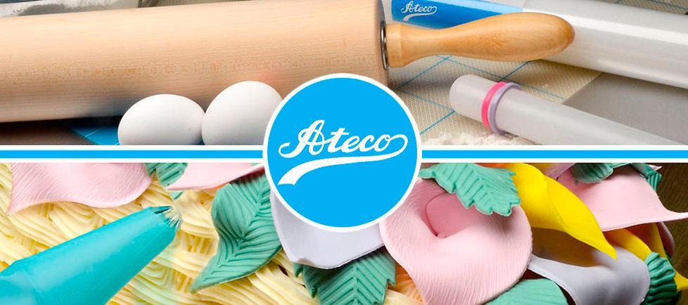 Ateco web.jpg