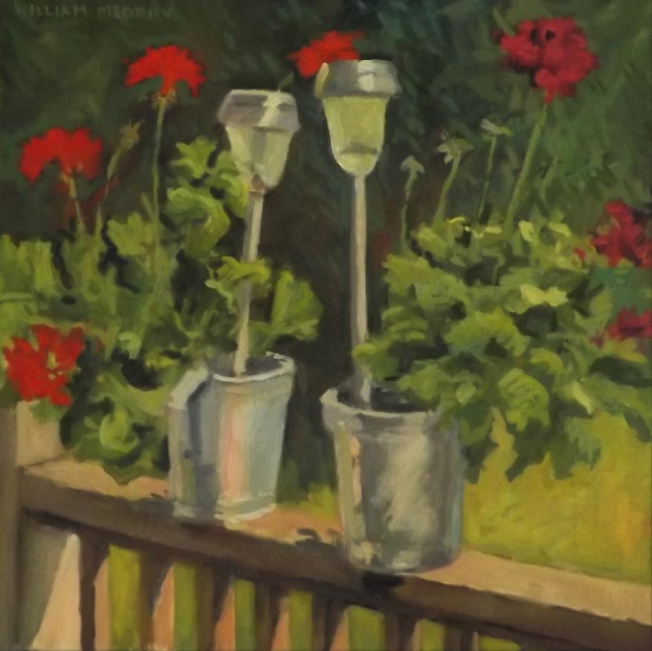 Geraniums, oil, 20 x 20