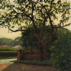 Cherry Tree, 28 x 28, Oil/Linen