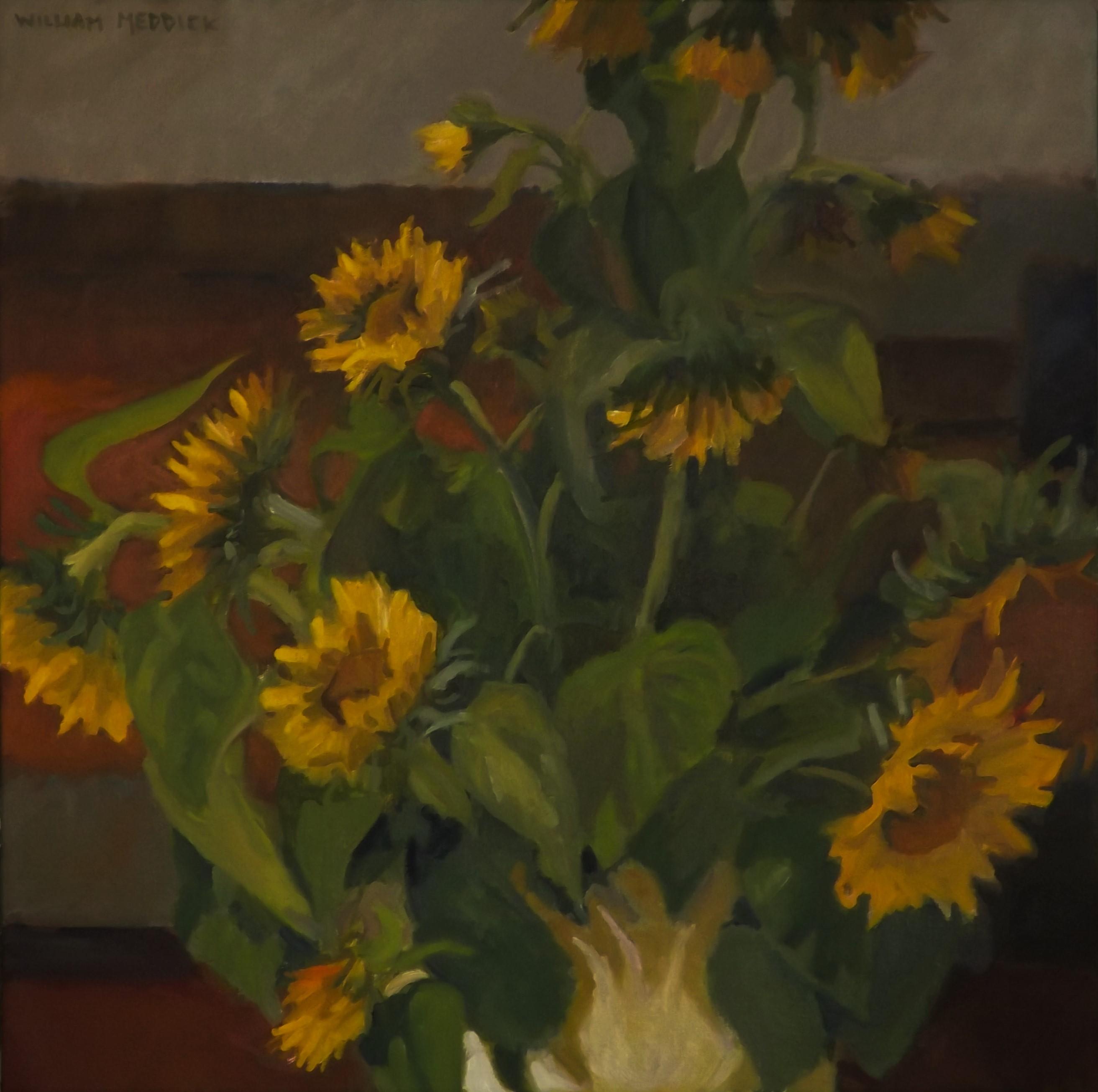 Sunflowers, oil, 24x24