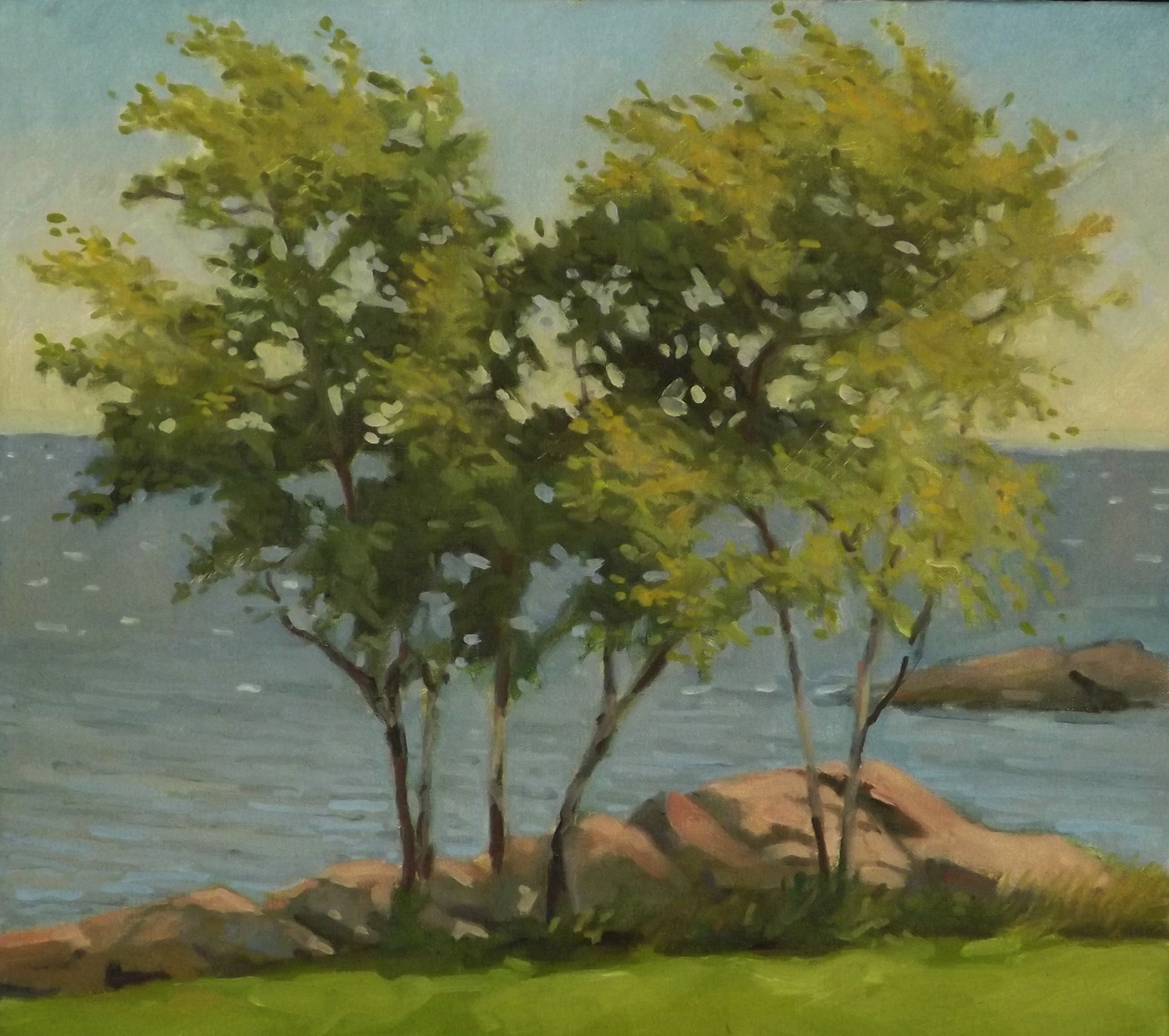 Chaffinch Island Trees, oil, 16 x 18