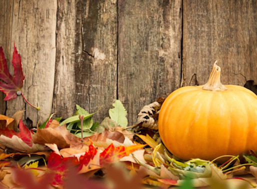 Proactive Tips to Stay Healthy this Fall!