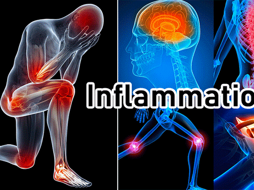 Inflammation and Chronic Pain