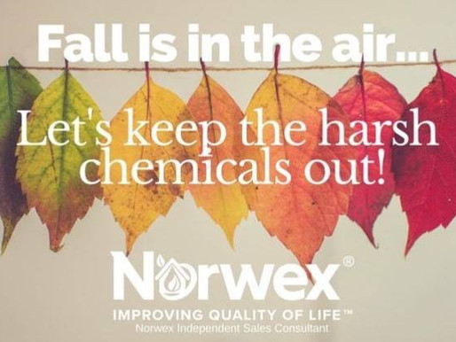 Fall in Love with Chemical Free Cleaning