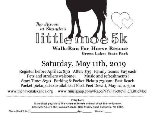 Join a 5K Walk/Run to Support Horse Rescue this Saturday.