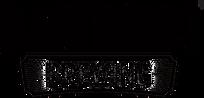 LN_Logo_Secondary2_No White.png