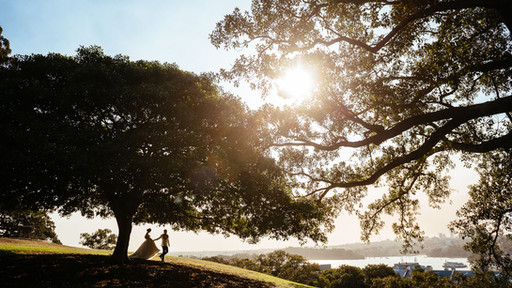 Creative wedding photography: a happy couple walk under a tree at sunset.