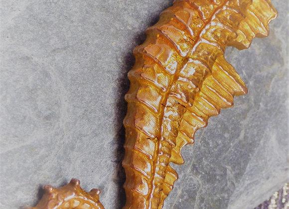 Large Copper Seahorse