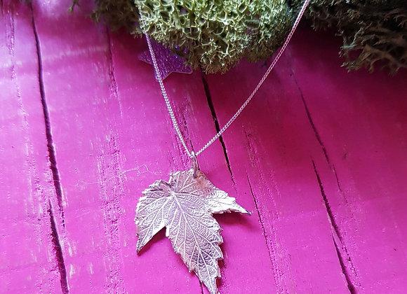 Silver Hop Leaf