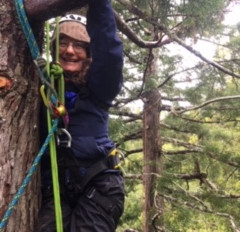 A Canopy Adventure with Archangel Ancient Tree Archive